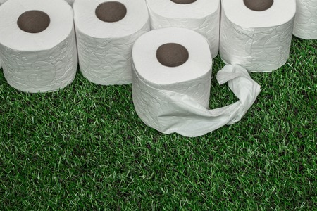 nicely: White toilet paper nicely folded on the green grass,the concept of hygiene and cleanliness