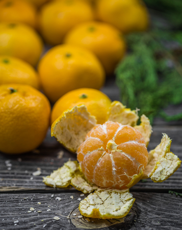 personal ornaments: still life with tangerines and fir tree on wooden background