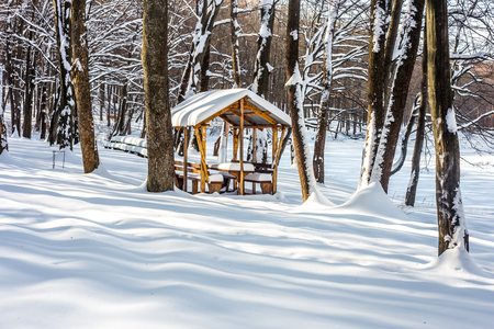winter wooden gazebo in a snowy forest, the concept of winter Stock Photo