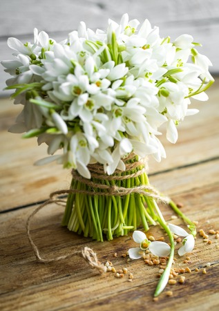 bouquet of beautiful snowdrops lies on a wooden background concept of spring and flowers