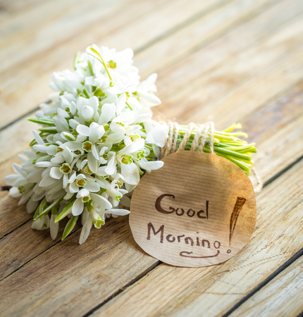 a bunch of beautiful delicate snowdrops and the words good morning on a round piece of paper lies on a wooden background concept of spring and flowers. Stock Photo