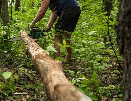 Un hombre con una motosierra corta un árbol en el bosque, primer