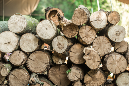 A deck of stacked logs ,the concept of lasarusa Stock Photo