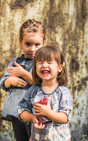berry: two cute girl eating fresh raspberries ,the concept of childrens healthy nutrition Stock Photo