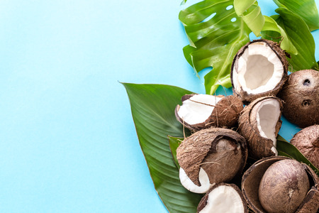 Fresh coconut halves with tropical leaves on blue background. Flat