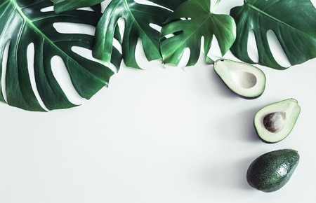 Avocado with tropical leaves on white background, place for text