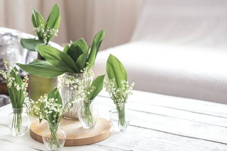 White spring flowers snowdrops in vintage glass bottles on white barn wall background, cottage interior decoration Reklamní fotografie