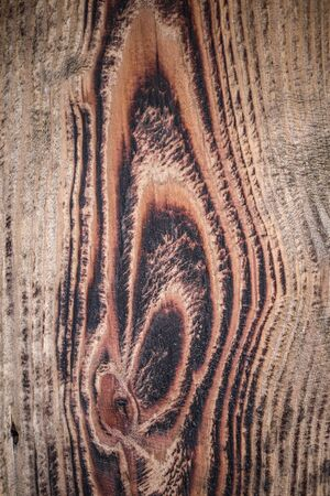 Brown wood contrast texture . Abstract background, empty template