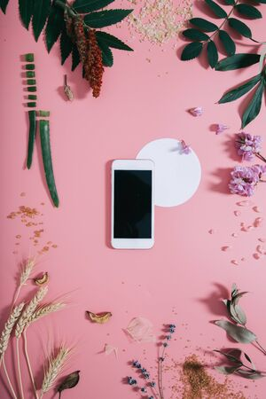 White phone with a clear screen and white circle shape in flowers on pink background. Flat lay. Top view. Stock Photo