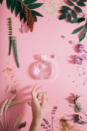 Transparent perfume bottle in flowers on pink background with womans hand. Spring background with aroma parfume. Beauty cosmetic, fresh aromatic. Flat lay