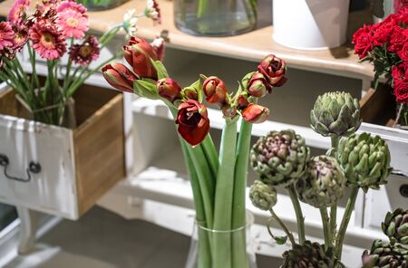 The artichoke flowers and the Amaryllis in a flower shop. Stock Photo