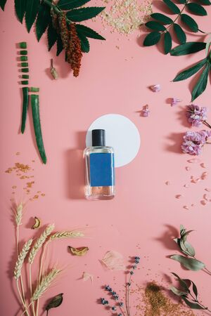 Perfume bottle in flowers on pink background with white circle shape. Spring background with aroma parfume. Beauty cosmetic, fresh aromatic. Flat lay
