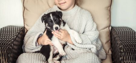 A little girl holding a puppy in her hands . The concept of Pets .