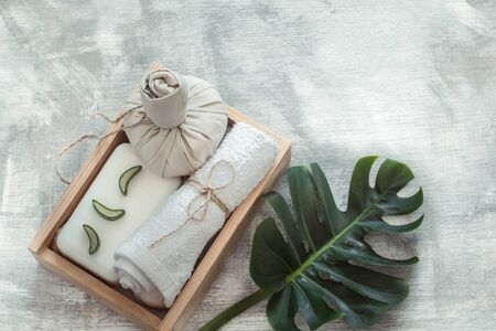 Spa composition with body care items and plants on a light background. The view from the top. Stock Photo