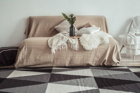 Modern interior of the living room with a sofa and decorative items . Decorative pillows and blankets. Coziness and comfort at home .