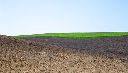 Beautiful black earth fields in Ukraine. Agricultural rural landscape, colorful hills. Plowed dark land and green fields. Explore the beauty of the world.