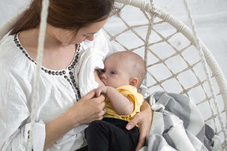 Mom breastfeeds her newborn baby in a white hammock chair on a light background. Breastfeeding concept, close up. Stock Photo