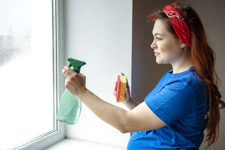 A beautiful pregnant woman in the last months of pregnancy is engaged in cleaning and washes the windows. Banque d'images