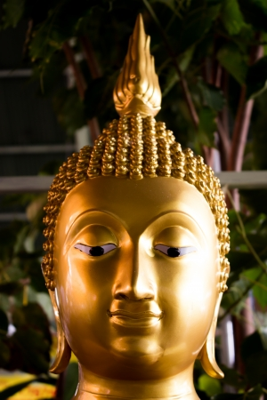 The buddha statue s head  photo