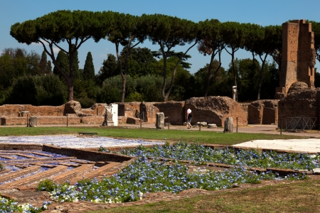 palatine: Ancient Roman ruins at the Palatine Hill in Rome