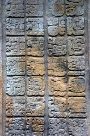 Ancient Mayan hieroglyphs  Quirigua ruins  Guatemala