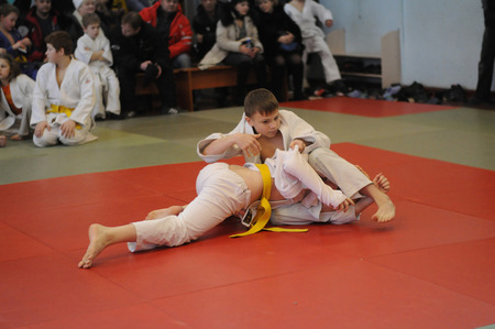 struggles: KOVROV, RUSSIA - JANUARY 24, 2015: Competitions Judo