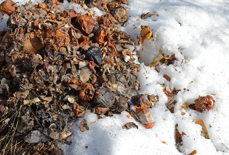 Compost heap in early spring. Close-up Stock Photo
