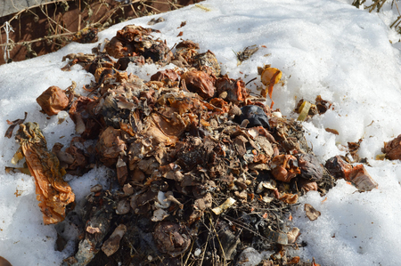 Compost heap in early spring Stock Photo