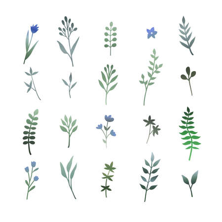 Set of hand-drawn illustrations of green leaves, herbs and branches. Botanical clipart. Floral design elements. Perfect for wedding invitations, greeting cards, posters and more. Illusztráció