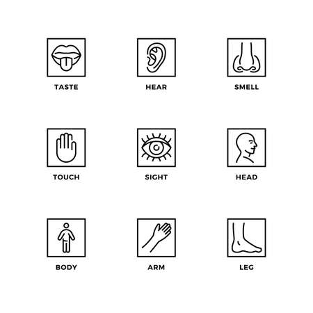 Vector set of design elements, logo design template, icons and badges for senses. Line icon set, editable stroke. Иллюстрация