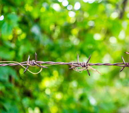 Rusty barbed wire spike twisted with old rope against green bokeh background. Freedom behind the barrier.