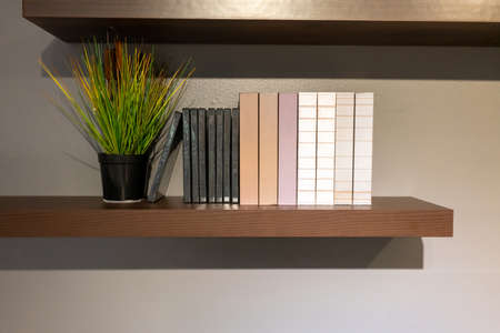 Books and decoration planting on wood shelf againt grey wall background.