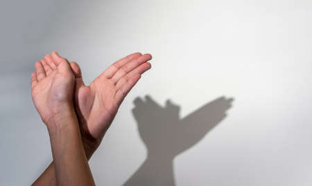 Woman hands creating silhouette shadow of animal on white wall background. Hand shadow of bird or butterfly Stock fotó