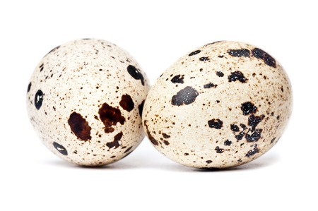 Two small quail eggs on white background
