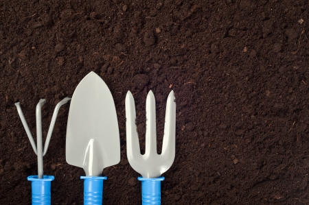 gardening tools: Garden Tools on Soil with Copy Space