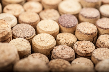 Close up of a cork wine with different variation of wine color Imagens
