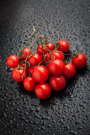Cherry tomatoes after rain Standard-Bild