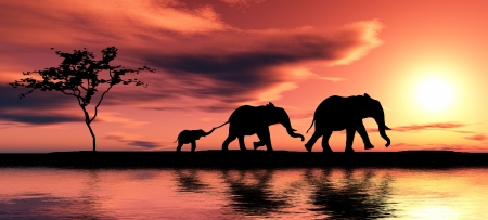 black family: Black elephant silhouettes by a river.
