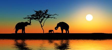 acacia: Black elephant silhouettes by a river.