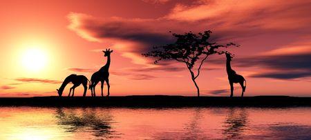 Black giraffe silhouettes by a river. photo