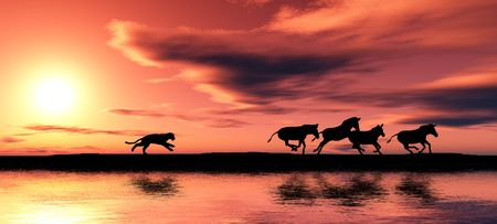 chasing: Black animal silhouettes by a river. Stock Photo
