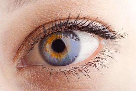 Young Women eye. Studio closeup shot (macro) Stock Photo - 8448081