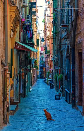 NAPLES (Campania, Italy) - The biggest city of south Italy 版權商用圖片