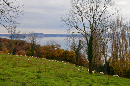 lake front: Bolsena lake (Lazio, Italy) - The town of Marta, province of Viterbo Stock Photo