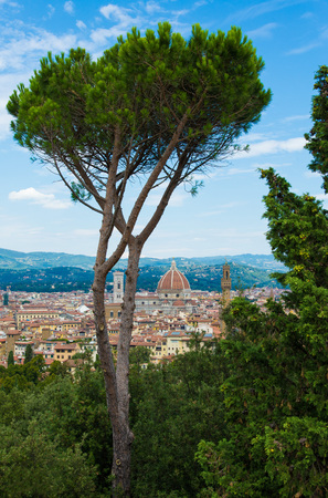 michelangelo: Florence, Italy - The capital of Renaissance arts and Tuscany region. Stock Photo