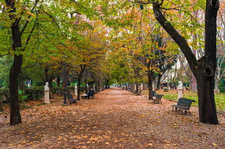 Rome, Italy - 4 December 2016 - A quaint and charming attraction of the capital of Italy: the park of Villa Borghese Editorial