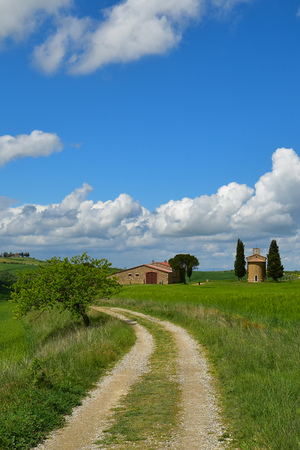 expanse: Val dOrcia, Italy - 1 May 2016 - The beautiful and very famous landscape of the Tuscany region, during the spring. All the places and landscapes of the Val dOrcia are protected by COPYRIGHT, following the recognition of the request of the town of San Qu Editorial