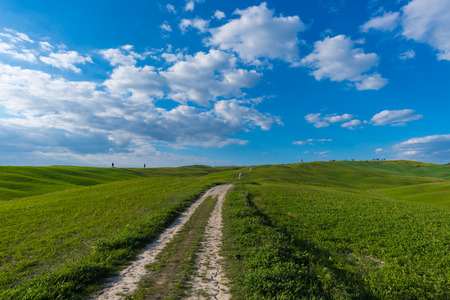 Val dOrcia, Italy - 23 April 2017 - The beautiful and very famous landscape of the Tuscany region, during the spring. All the places and landscapes of the Val dOrcia are protected by copyright, following the recognition of the request of the town of San Editorial