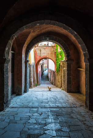 tuscania: Tuscania (Italy) - A gorgeous Etruscan and medieval town in the province of Viterbo, Tuscia, Lazio region. Its a tourist attraction for the many churches and the lovely historic center.