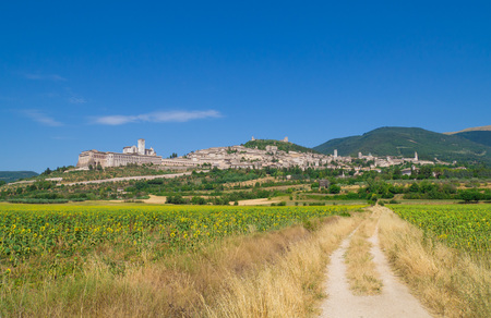 francis: Assisi, Umbria (Italy) - The awesome medieval stone town in Umbria region, with the castle and the famous Saint Francis sanctuary.